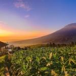 Wisata Alam Lembah Sindoro Posong